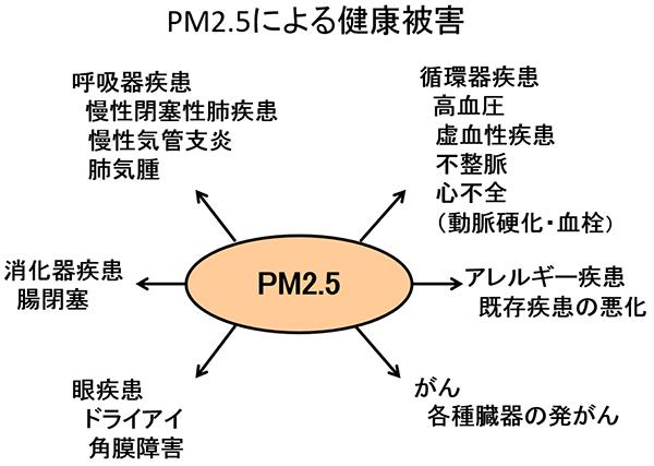 井上先生コラム2-2