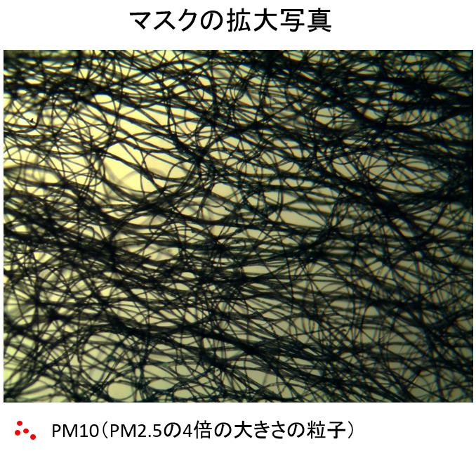 井上先生コラム5-1