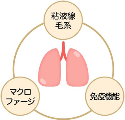 adachi_3-2